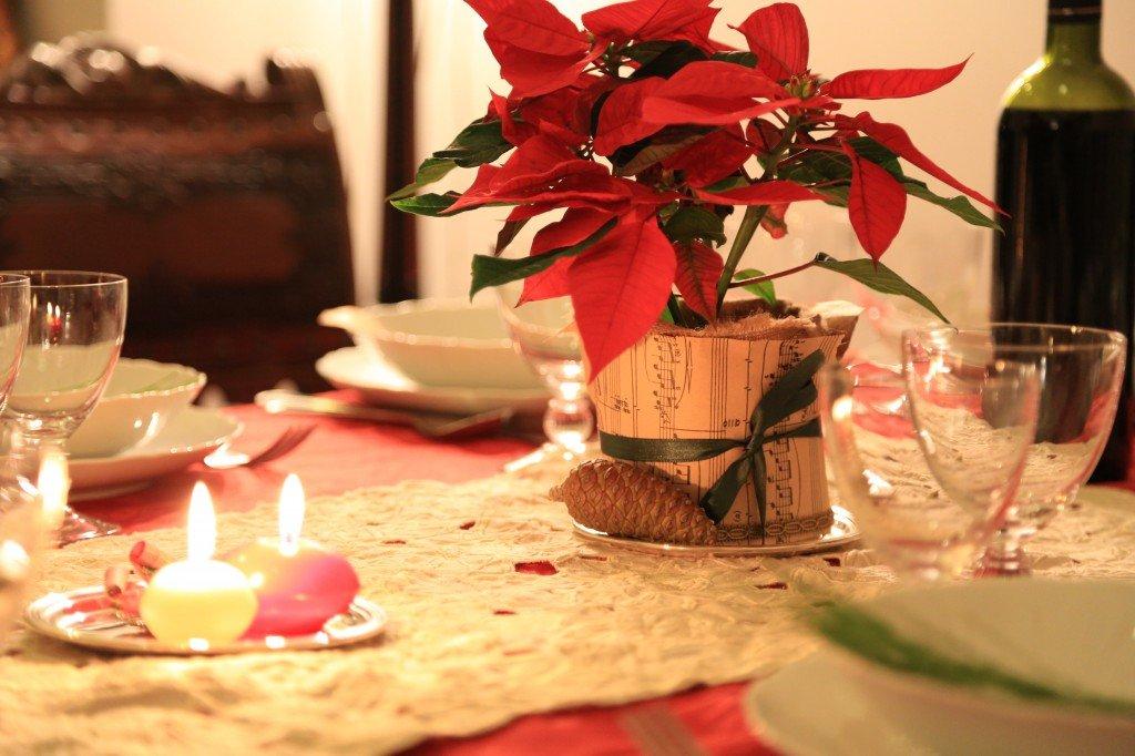 La mia tavola di natale a casa di ro - Come tenere la stella di natale in casa ...