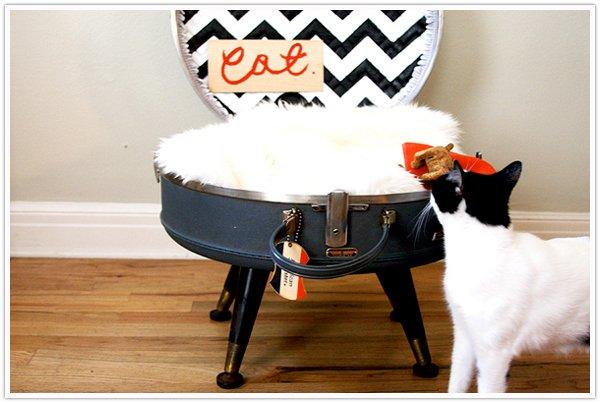 cuccia per gatti fai da te