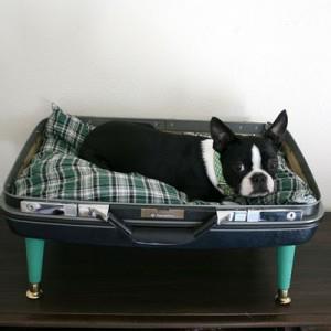Non deve essere necessariamente vintage, basta una valigia rotta per farla diventare una morbidissima cuccia per cani e gatti.
