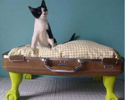 La cuccia del gatto è uno dei miei progetti preferiti, una vecchia valigia, un cuscino e..quattro zampe.