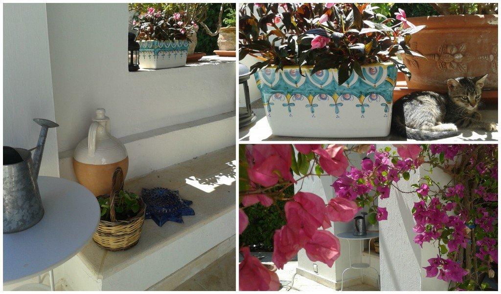 il vaso colorato l'abbiamo preso a Vietri.