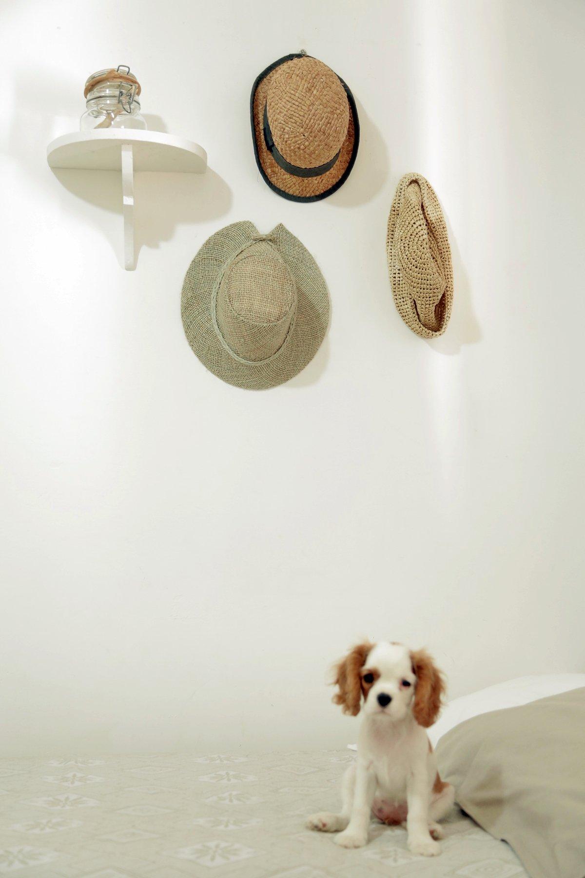cappelli paglia riciclo