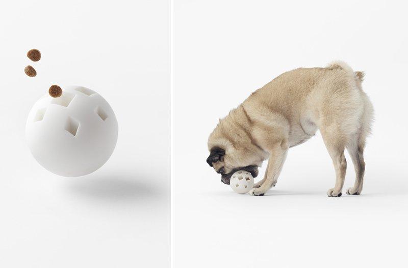 palla giocattolo cane
