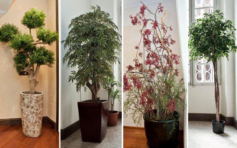 Piante finte da interno migliori idee su piante finte da - Piante verdi interno ...