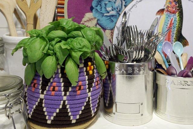 piante aromatiche fai da te