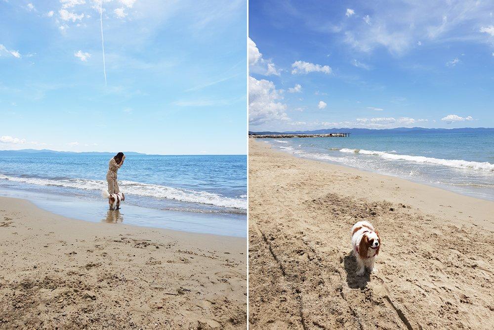 spiagge cani Toscana