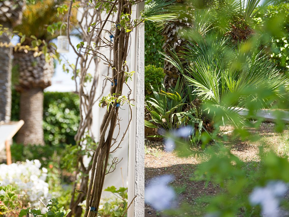 giardino pugliese